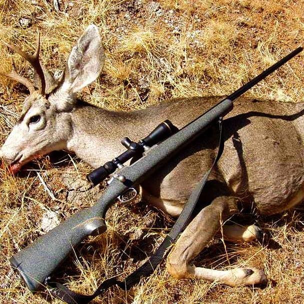 firearm deer